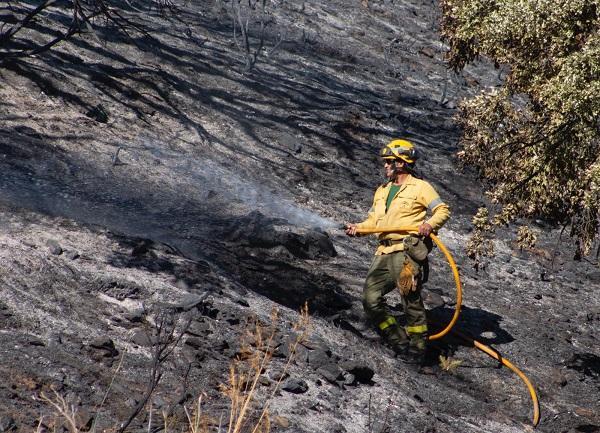 Un bombero del Infoca trabaja en la extinción de un fuego en Polopos el pasado verano.
