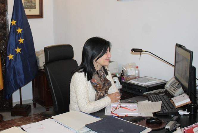La subdelegada participa a distancia en el comité de dirección del INSS.