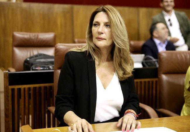 Concha Insúa, en el Parlamento andaluz.