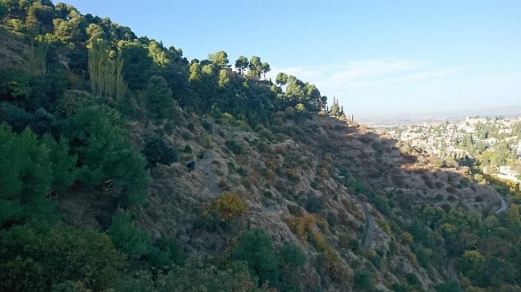 Ladera de la Dehesa del Generalife junto al Valle del Darro, con el Albaicín y Sacromonte al fondo
