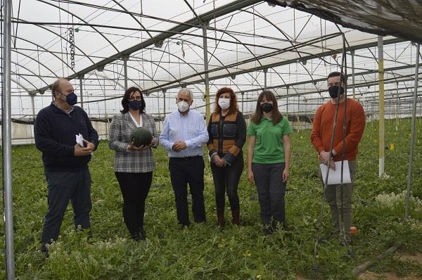 La delegada de Agricultura (segunda por la izquierda), en un invernadero.