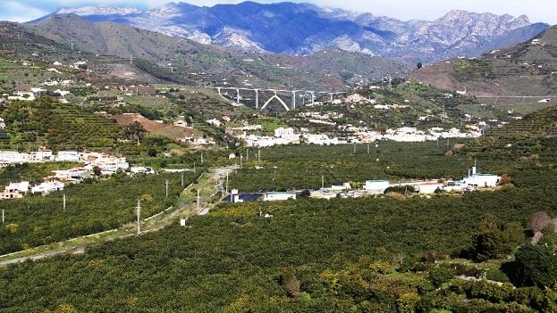 Plantaciones de subtropicales en la vega de Río Verde, en Almuñécar.