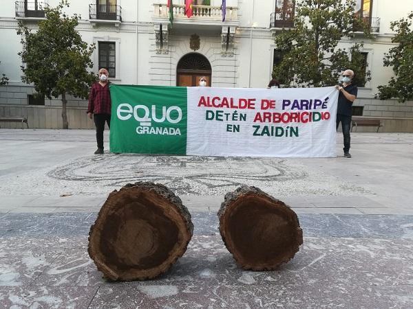 Equo llevó restos de la tala a la Plaza del Carmen.