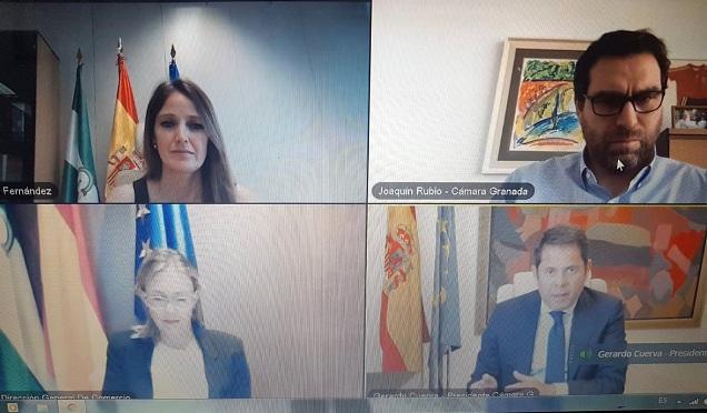 Webinar entre responsables de la Junta y la Cámara de Comercio de Granada