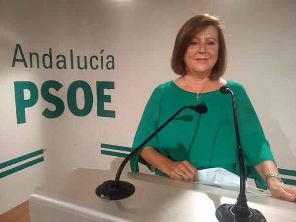 María José Sánchez Rubio, en rueda de prensa.