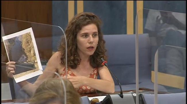 La parlamentaria Ana Villaverde, este miércoles en la Comisión.