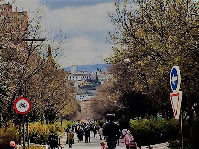 Avenida de la Constitución.