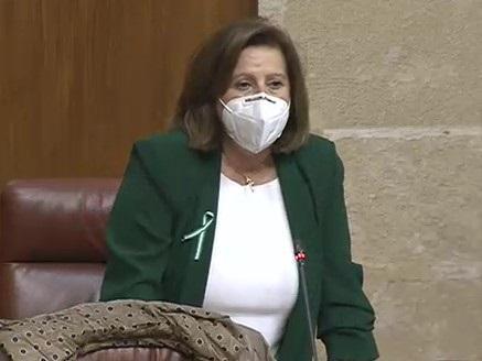 María José Sánchez, en el Parlamento.