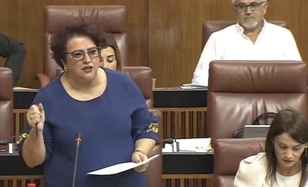 Teresa Jiménez durante su intervención en el pleno.
