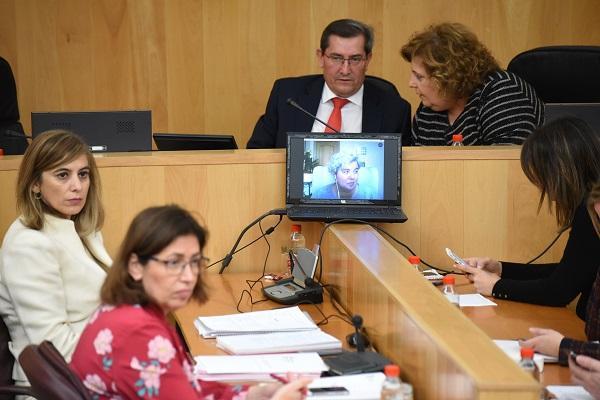 El pleno de Diputación se ha reunido con carácter extraordinario.