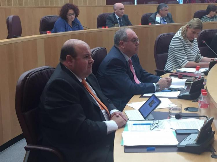 José Robles en el pleno de este martes.