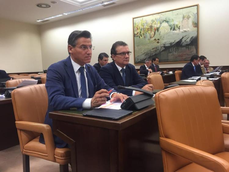 Luis Salvador en la Comisión de Agricultura.