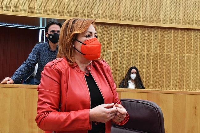 Mari Carmen Pérez, en la Diputación.
