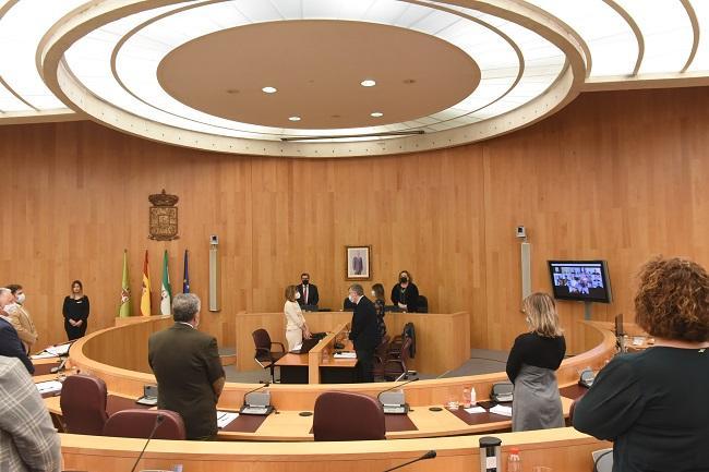 Minuto de silencio guardado en el pleno de Diputación por las víctimas del Covid