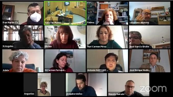 Captura de pantalla de la sesión plenaria semipresencial de la Diputación.