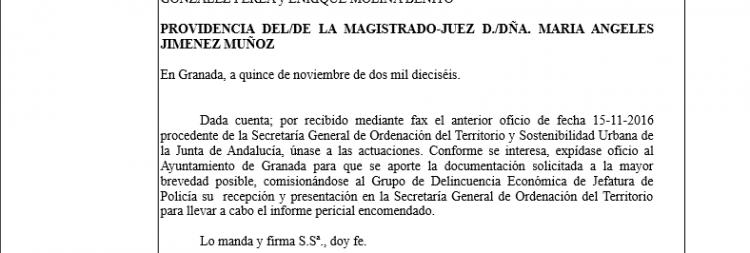 Detalle de la providencia dictada por la jueza del caso Nazarí.