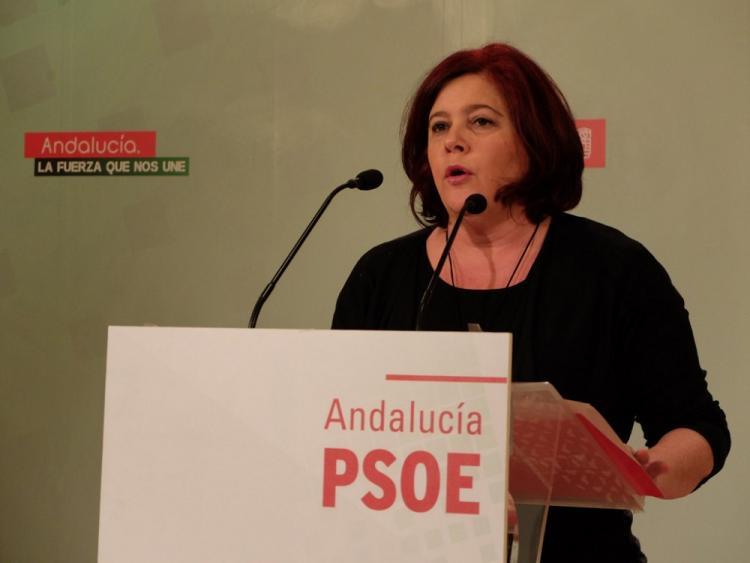 Elvira Ramón en una rueda de prensa.