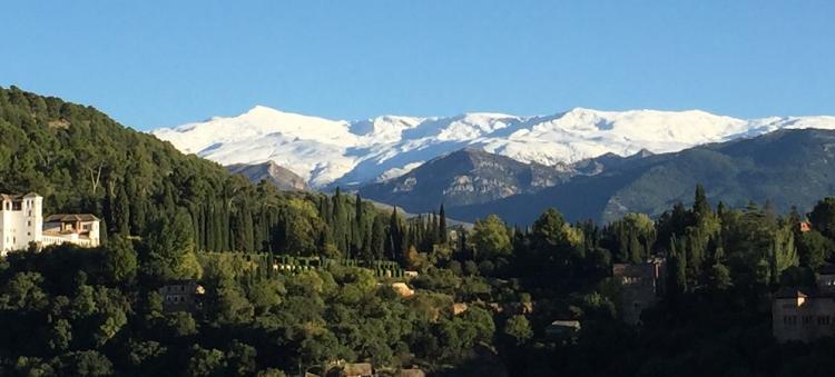 Sierra Nevada al fondo, con el bosque de la Alhambra y Generalife, en primer término.