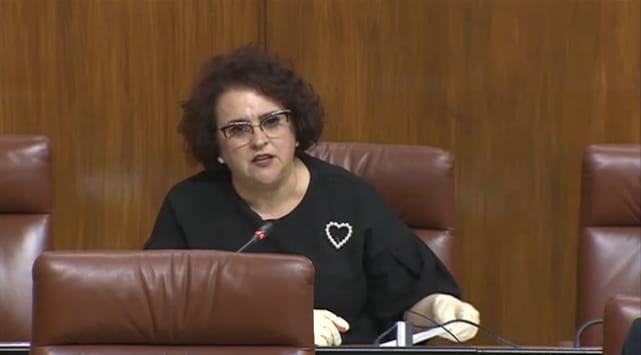 Teresa Jiménez, en una intervención en el Parlamento.