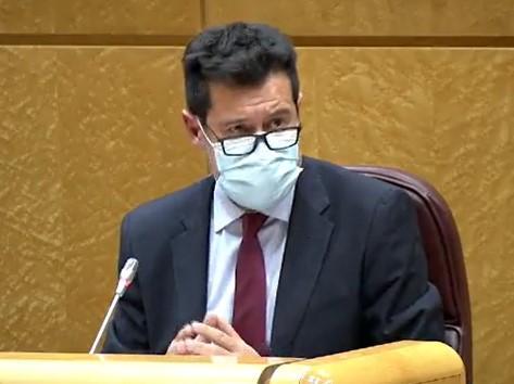 Alejandro Zubeldia, en una de sus intervenciones en el Senado.