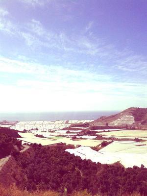 Imagen de archivo de la Costa granadina desde la A-7.