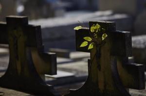 Cruces en tumbas en el recinto del Cementerio de la Almudena, en Madrid.