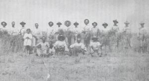 Cuadrilla de segadores del crotijo de la Jara, a principios de los años 30.