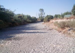 Río Dílar a su paso por la Vega granadina.