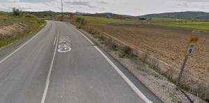 El atropello se produjo en el km 9 de la GR-3100, término de Montejícar.