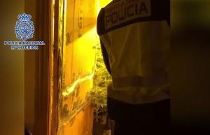 Un agente inspecciona una de las habitaciones con cultivos de marihuana.