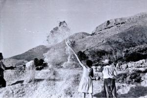 Ángela Cerrillos aventando en el cortijo Pedro Bueno, de Loja, en 1963.