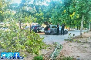 El vehículo chocó contra un bordillo y varios árboles.