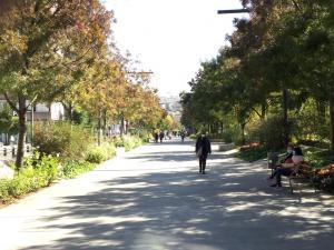 Imagen de la Avenida de la Constitución, este viernes a mediodía.