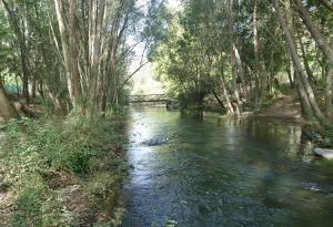 Rio Genil, cerca de Pinos Genil.