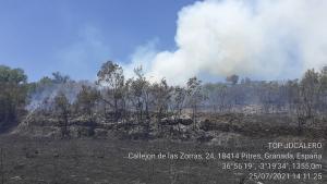 Zona afectada por las llamas.