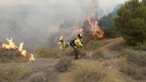 Bomberos actúan en el incendio de Caniles.