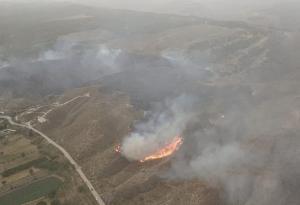 Imagen del incendio de Caniles, con las llamas cerca de la carretera.