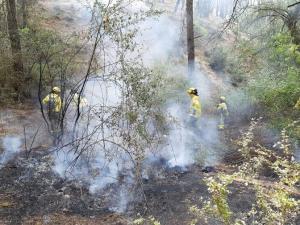 Bomberos atajan el fuego en la Sierra de Huétor