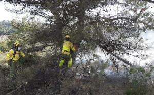 Bomberos trabajan en la extinción del fuego.
