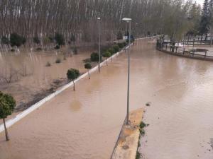 El desbordamiento del Genil ha afectado a fincas y vías públicas.