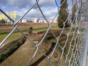 En la zona se talaron árboles y los vecinos reclaman que paren las talas y se apueste por parques y arbolados.