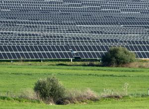 Planta fotovoltaica en una zona de estepa.