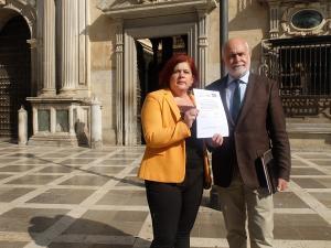 Elvira Ramón y Gregorio Cámara, a las puertas del TSJA.