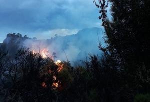 Una imagen de las llamas.