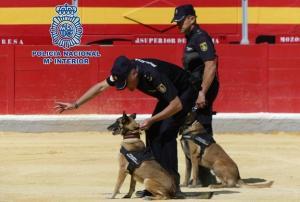 Perros policía, durante la exhibición.