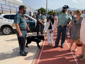 Imagen de la presentación de la Operación Verano 2021.
