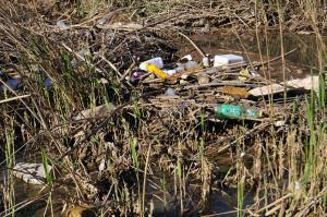 Todo tipo de botes de plástico y basura se acumula en los carrizales del humedal.