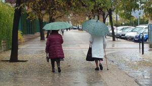 Los paraguas han vuelto a verse por las calles de Granada.