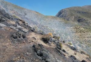 Trabajos de extinción del fuego, ya sin llamas.