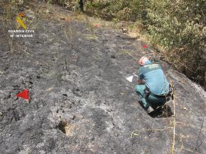 Un agente de la Guardia Civil trabajando sobre el terreno calcinado.